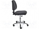 Elme VERAX1R / ESD chair; Version: ESD; 420÷540mm